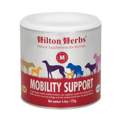 Mobility Support Dog