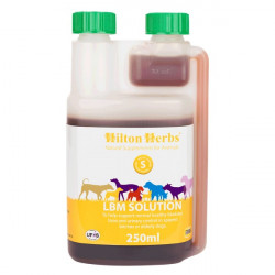 LBM Solution Dog - 250 ml