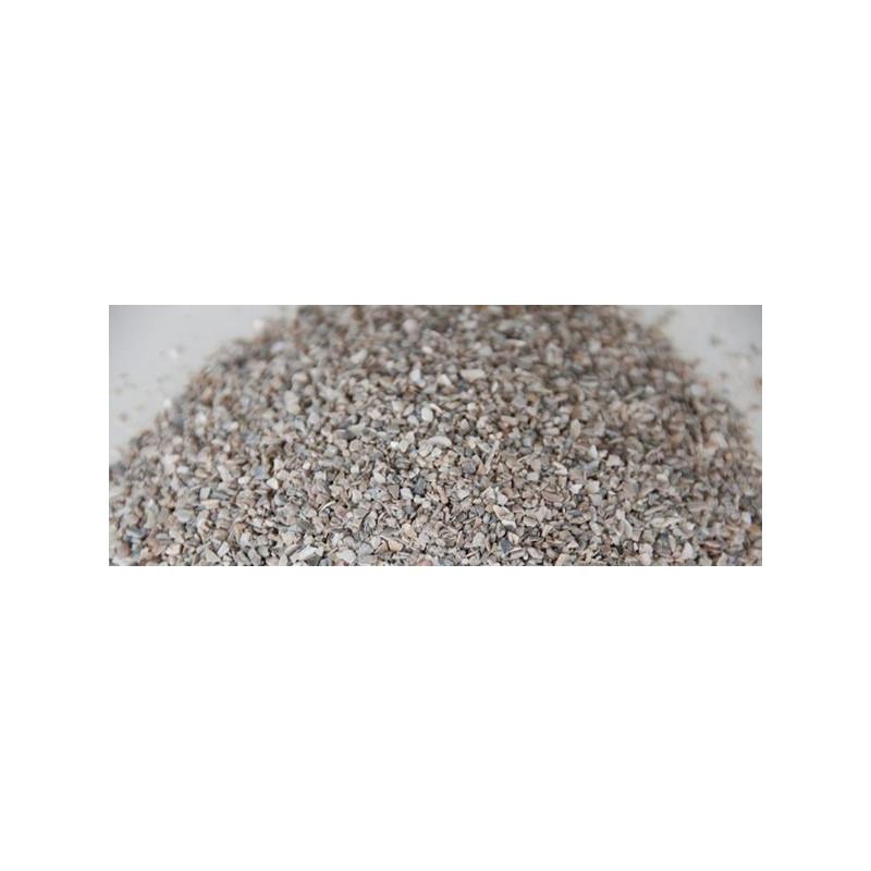 Aegir calcaire de coquillage