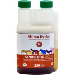 Senior Dog Gold